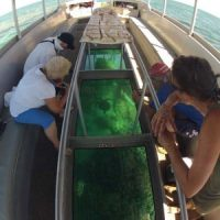 Guests viewing Coral through Glass Panels on Glass Bottom Boat at Ningaloo Reef
